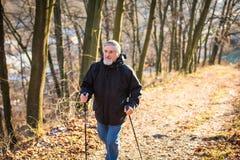 Marche nordique d'homme aîné Photographie stock