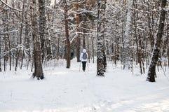 Marche nordique Femme dans une veste blanche avec un sac à dos augmentant dans paysage scénique de forêt froide un beau avec la n Images libres de droits