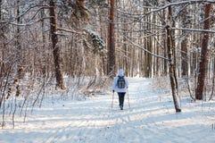 Marche nordique Femme dans une veste blanche avec un sac à dos augmentant dans paysage scénique de forêt froide un beau avec la n Photographie stock libre de droits