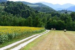 Marche: paesaggio del paese Fotografie Stock Libere da Diritti