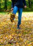 Marche par l'automne Photo stock
