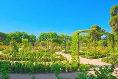 Marche par le parc de Buen Retiro Rose Park Photographie stock