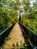 Marche par le pont Image libre de droits