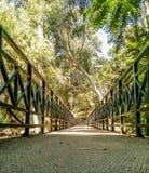 Marche par le pont Images libres de droits