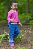 Marche par les bois Photo libre de droits