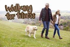 Marche pour des couples de forme physique prenant le chien pour la promenade Photo libre de droits