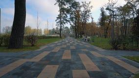 Marche sur l'allée de parc dans le jour ensoleillé d'automne clips vidéos