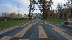 Marche sur l'allée de parc dans le jour ensoleillé d'automne banque de vidéos
