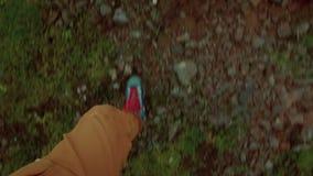 Marche sur l'herbe et la mousse dans des bottes de trekking clips vidéos