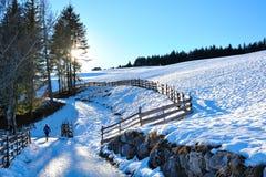 Marche sur la neige dans les Alpes photo libre de droits