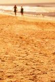 Marche sur la plage photo libre de droits