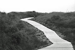 Marche sur un long chemin dans les dunes en automne Images libres de droits
