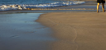 Marche sur une plage Photos libres de droits
