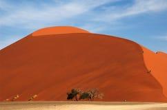 Marche vers le haut de la dune 45 au total Images stock