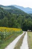 Marcheert: het landschap van het land Stock Foto