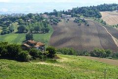 Marcheert (Italië): de zomerlandschap Stock Foto