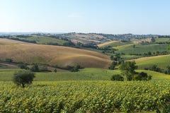 Marcheert (Italië): de zomerlandschap Royalty-vrije Stock Foto's