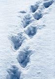 Marchepieds dans la neige Images stock