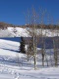 Marchepieds dans la neige Photographie stock