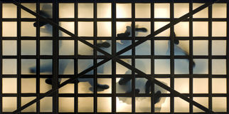 Marchepieds en verre de vestibule photographie stock libre de droits