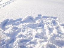 Marchepieds sur la neige photos stock