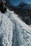 Marchepieds sur la neige Photographie stock