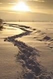Marchepieds sur la neige Image stock