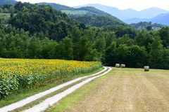 Marches: country landscape Royalty Free Stock Photos
