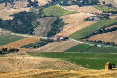 Marches (Italy), landscape. Marches (Italy) - Landscape at summer near Cingoli Royalty Free Stock Photo