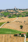 Marches (Italy) - Landscape. Region between Montecassiano and Montefano, near Macerata (Marches, Italy) - Landscape at summer Royalty Free Stock Photos