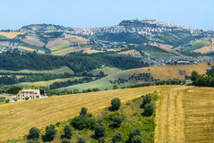 Marches (Italy), Landscape. Marches (Italy) - Landscape near Fermo and Monterubbiano at summer Stock Photo