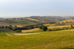 Marches (Italy) - Landscape at summer Royalty Free Stock Images