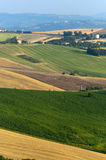 Marches (Italy) - Landscape at summer. Marches (Italy) - Rural landscape at summer Royalty Free Stock Image