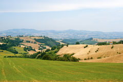 Marches (Italy) - Landscape at summer. Near Ancona Royalty Free Stock Photography
