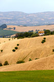 Marches (Italy) - Landscape at summer Royalty Free Stock Photo