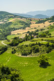 Marches Landscape. Marches (Italy) - Landscape at summer between Sassoferrato and Arcevia Stock Photography
