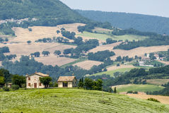 Marches Landscape. Marches (Italy) - Landscape at summer between Sassoferrato and Arcevia Royalty Free Stock Photo