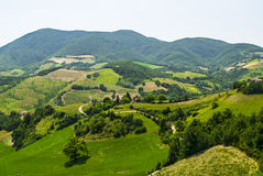 Marches Landscape. Marches (Italy) - Landscape at summer between Sassoferrato and Arcevia Royalty Free Stock Photos