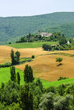 Marches Landscape. Marches (Italy) - Landscape at summer between Sassoferrato and Arcevia Stock Images