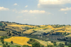 Marches landscape. Marches (Italy) - Landscape at summer in a sunny day Royalty Free Stock Image