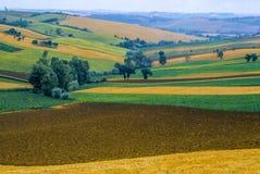 Marches landscape. Moresco (Ascoli Piceno, Marches, Italy) - The medieval village Stock Image
