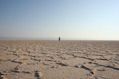 Marcheur dans le désert (2) Images stock