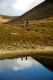 Marcheur et montagne Photographie stock