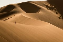 Marcheur solitaire en dunes de sable de Sossusvlei, Namibie images stock