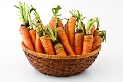 marchewki świeże Zdjęcia Stock