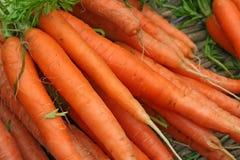marchewki świeże Obrazy Royalty Free
