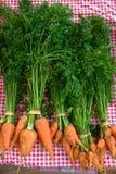 marchewki organicznie Fotografia Royalty Free