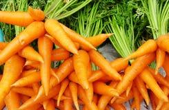marchewki pomarańczowe Fotografia Stock