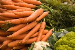 marchewki świeże Fotografia Stock