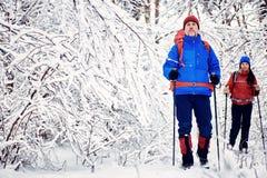 Marchez par la forêt d'hiver avec un sac à dos et une tente Images libres de droits